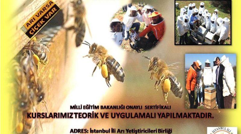 İstanbul Arıcılar Birliğinde bal gibi kurs