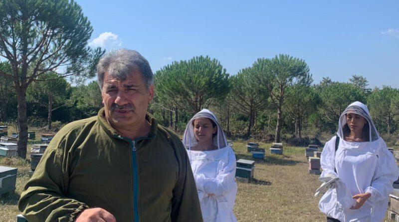 İstanbulda bal hasatı yapıldı